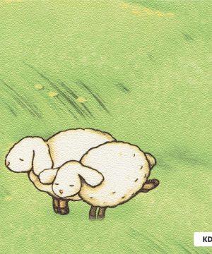 Giấy dán tường cừu chất lượng