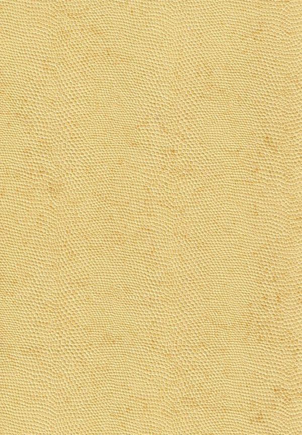 thi công giấy dán tường vàng