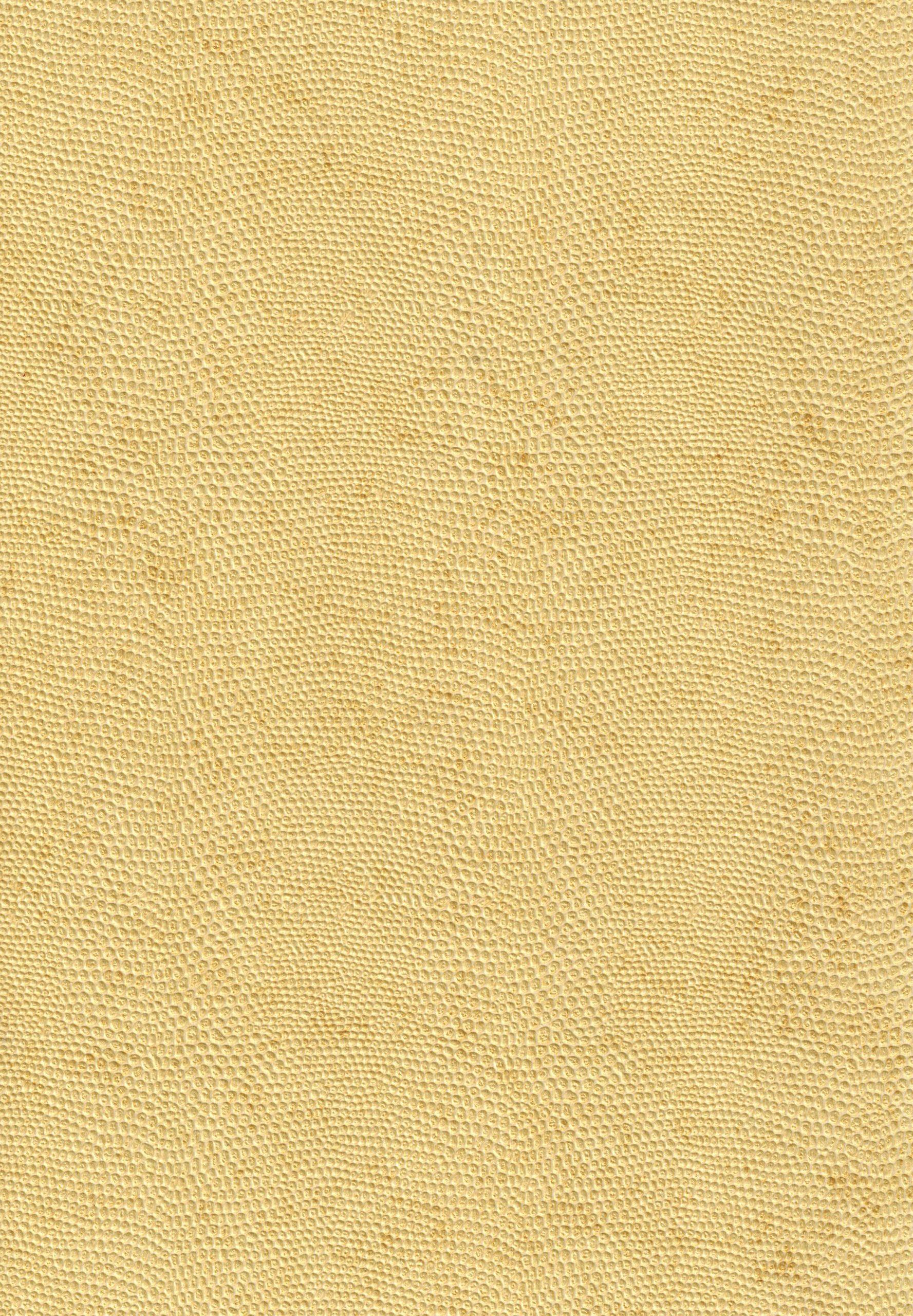 Thi công giấy dán tường màu vàng
